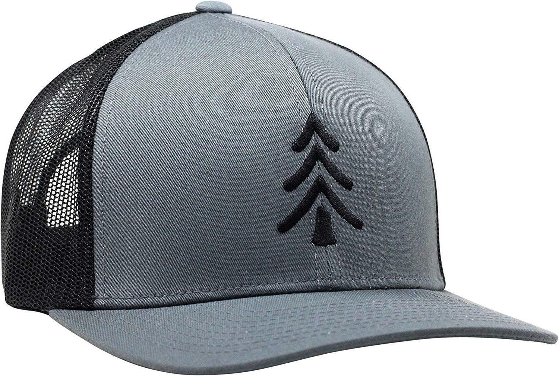 Lindo Pine Tree